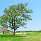 Club Karibana, Cartagena, Cartagena Colombia Golf, Golf destination review, Golf in Colombia, Golf in Cartagena